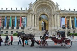Photo of Paris Romantic Horse and Carriage Ride through Paris Horse  and  Carriage Ride -Paris