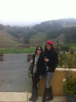 Cousins trip to Napa, Nicholson Ranch , lstoli04 - January 2011