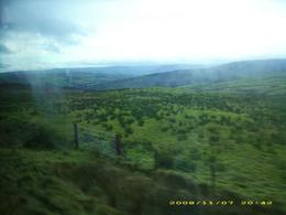 The countryside of Northern Ireland along the bus route. Taken from the bus., Lacey B - November 2008