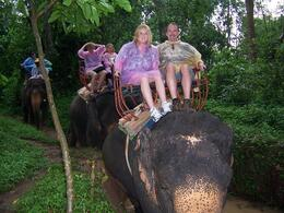 Despite the rain, we had a fabulous time. Amazing that each elephant knows his mahout and follows his commands. - May 2010