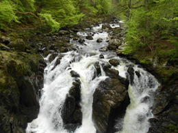 Photo of Edinburgh Highland Lochs, Glens and Whisky Small-Group  Day Trip from Edinburgh Falls at the Hermitage