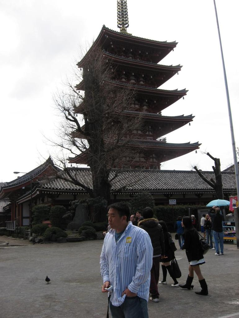 The Temple - Kyoto