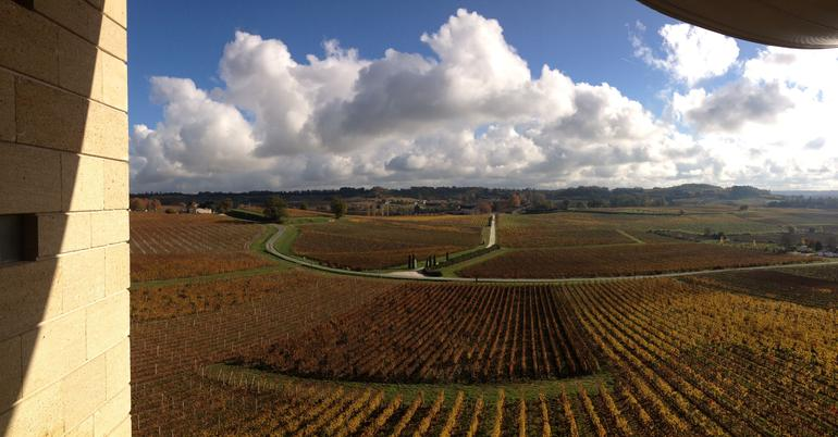 View from Chateau Fraugeres of its wineyards.