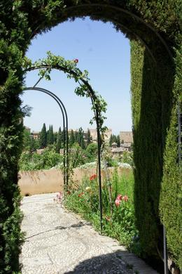 View of Alhambra from the Generalife Gardens , Darryl H - June 2012
