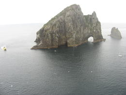 Photo of Bay of Islands Bay of Islands and Hole in the Rock Scenic Helicopter Tour HIR2