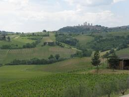 Photo of Florence Tuscany in One Day Sightseeing Tour San Gimignano from the Vineyard