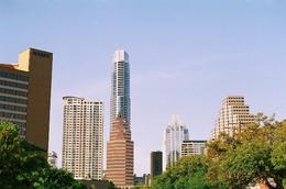 Downtown Austin, Cat - November 2012