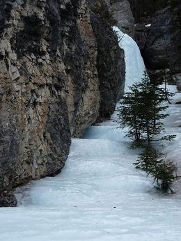 Photo of Banff Grotto Canyon Icewalk Grotto Canyon