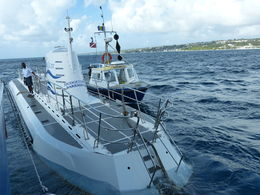 Photo of Barbados Atlantis Submarine Expedition Tour Ready for the underwater adventure