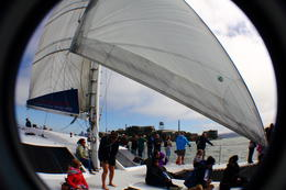 Photo of San Francisco San Francisco Bay Sailing Cruise the catamaran with people