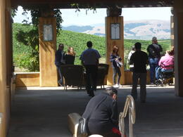 Photo of San Francisco Napa and Sonoma Wine Country Tour The group enjoying the view