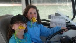 Photo of San Francisco San Francisco Duck Tour driving-duck.jpg