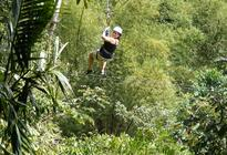 Photo of Montego Bay Canopy Tour