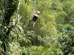 Lyne ziplining over the Great River gorge near Montego Bay. (Lyne is my sister, she had a great time), Sylvie B - March 2009