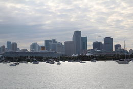 Picture taken on Biscayne Bay Cruise. , Gary T - February 2015
