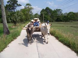 A great way to see the Thai countryside and experience native living. - May 2010