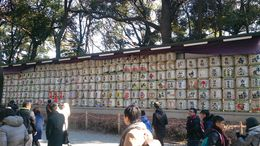 Photo of   Shinto Shrine Saki display