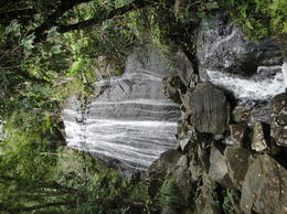 Photo of San Juan El Yunque Rainforest Half-Day Trip from San Juan Waterfall