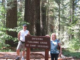 Photo of San Francisco Yosemite National Park and Giant Sequoias Trip Giant Seqouias