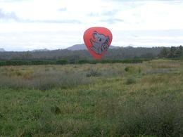 Hot air ballooning over the Atherton Tablelands, on our Cairns balloon flight. - May 2008