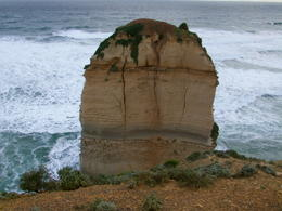 Photo of Melbourne Great Ocean Road Small Group Eco Tour from Melbourne IMAG0052