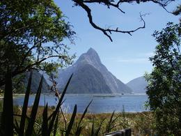 Milford Sound is a really special place., William A - February 2009