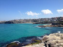 Photo of Sydney Sydney, Bondi Beach and Kings Cross Afternoon Tour Bondi Beach