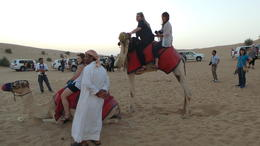 Camel ride , fionaflood - November 2014