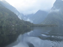 Misty Morning on Doubtful Sound , Mary Ann G - June 2015