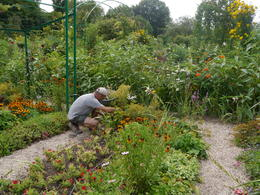 Loved the gardens, was quite envious of the gardening , Janette M - August 2013