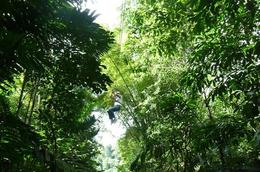 Photo of Montego Bay Canopy Tour Flying High