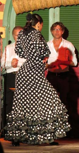 Photo of Seville Seville Night Tour with Tablao Flamenco Show Passionate and talented