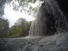 swimming under a waterfall was amazing. , Carol P - May 2016