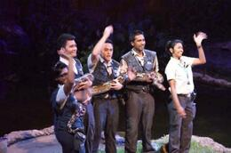 Photo of Singapore Private Tour: Singapore Zoo Night Safari Tour with optional Buffet Dinner creatures-of-the-night-show-photo_1002127-770tall.jpg