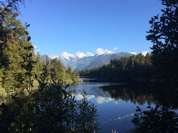 Lake Matheson Fox Glacier