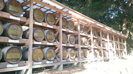 Photo of   More empty Saki barrels