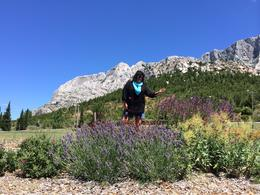 Photo of   This is me with the Sainte Victoire mountains in the background