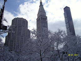 Photo of   View from Central Park. January, 2011