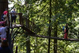 Photo of   Capilano Suspension Bridge