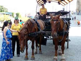 Photo of Stockholm Stockholm in One Day Sightseeing Tour The Horse and Carriage option is a relaxed way of seeing the old town