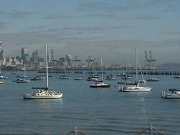 Photo of   Auckland from the Harbour