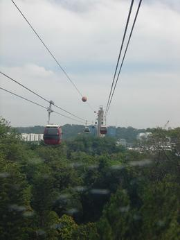 Photo of Singapore Sentosa Island Tour with Singapore Cable Car and Optional S.E.A Aquarium Cable Car