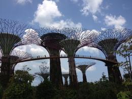 Photo of Singapore Singapore Round-Island Tour with Changi Prison, Kranji War Memorial and Gardens by the Bay Gardens by the Bay