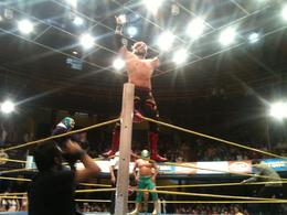 Photo of Mexico City Mexican Wrestling: Experience Lucha Libre in Mexico City Mexican Wrestling 6