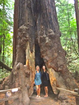 Total tourist moment at Muir woods. The forest was beautiful and the trees were huge! This was our favorite part of the tour, even though our footwear wasn't the best. , Jeronimo J - November 2015