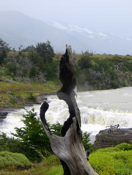 Photo of El Calafate Full Day Tour to the Torres del Paine National Park One of 2 waterfalls on the tour