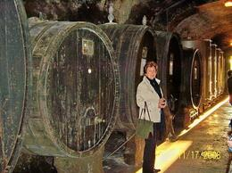 Photo of Florence Private Tour: Chianti Region Wine Tasting Rome - Frascati Winery Tour