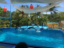 Photo of Punta Cana Manati Park with Optional Dolphin Swim At The Dolphin Show