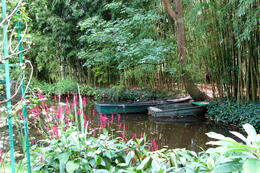 Photo of Paris Giverny and Monet's Garden Bike Tour IMG_1943