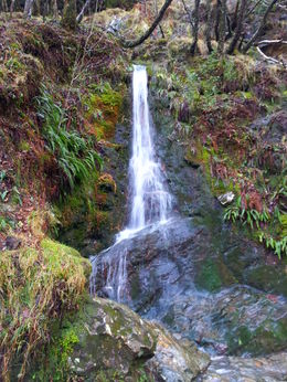 Waterfall at Glendalough, on the path to the upper lake , Joke H - February 2016